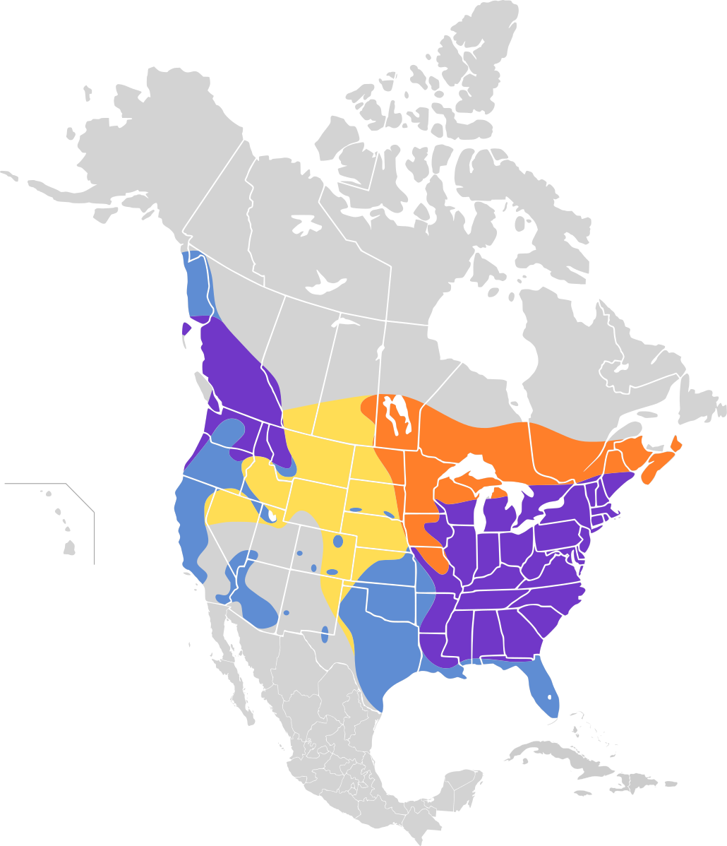 A map of North America with most of America and some parts of Southern Canada swathed in large patches of yellow, orange, purple, and blue.