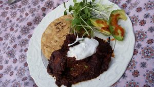 An example of this innovation of food and taste is this chocolate mole that was created last year in the Terroir program. The ingredients we used, local chicken, local tostadas, local microgreens, and local chiles were crucial components to the dish. But we also ahve to recognize that we would not have had those chiles if it wasn't for the history of trade. We wouldn't have the cacao in the chocolate without transportation, and we wouldn't have the avocado either. We are still able to be environmentally conscious and appreciate tastes that we would not have without technological advancements.