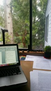 My desk as I was writing my paper. Wheatgrass from past tasting lab in the background.