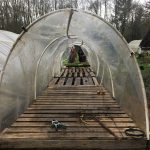 Our finished hoop house designed for hardening off plants coming from the greenhouse.