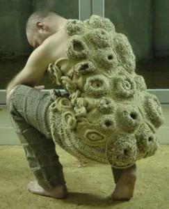 barnacles the ebestiary