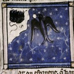 illumination of swallow from the Bestiaire d'Amour