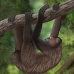 Sloth lemur Illustration hanging from branch