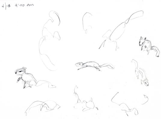 Chipmunk motion sketches