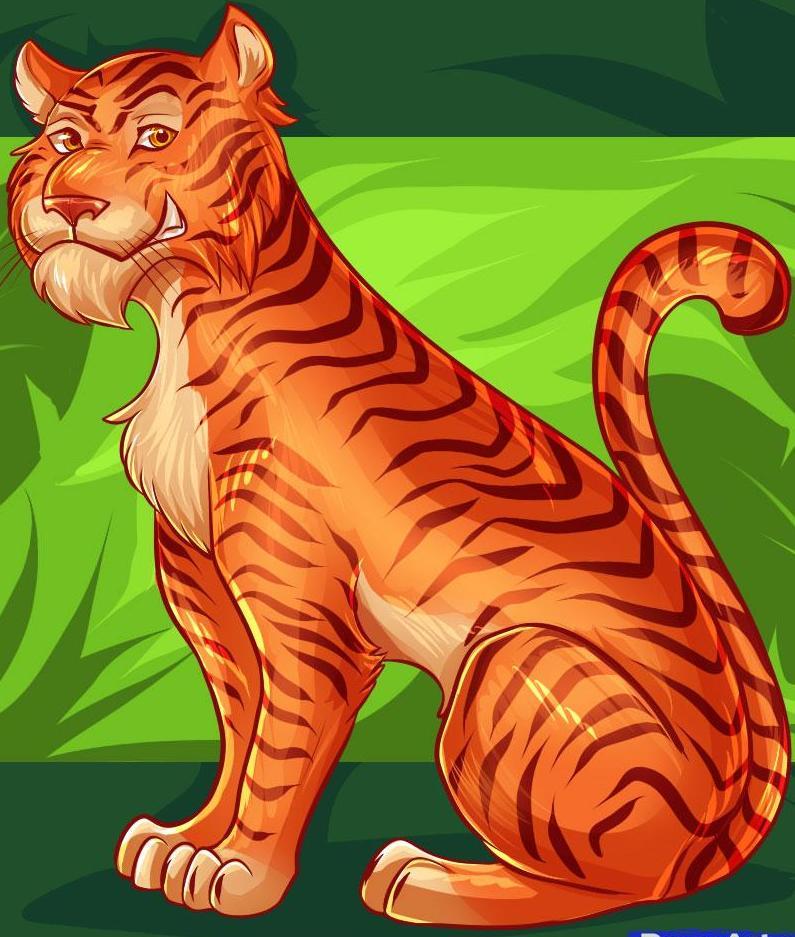 how to draw a sumatran tiger