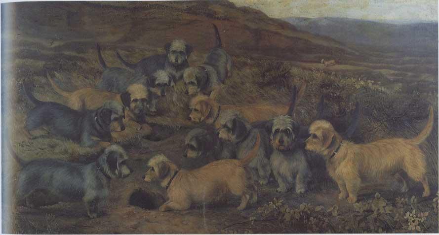 Lucy Waller (active 1882-1906) Yorkshire Dandies 1889