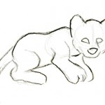Basic sketch of a cub.