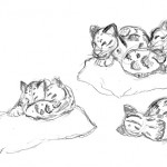 Various sketches of the cubs sleeping.