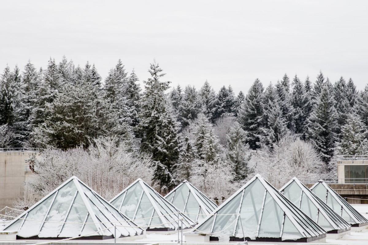 2016 snow campus daytime-2