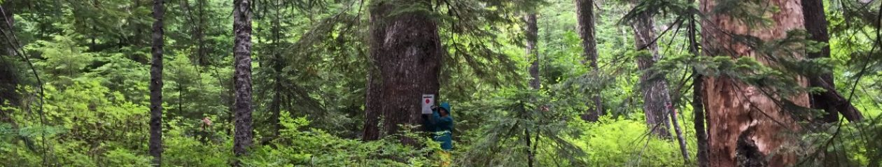 Dylan Fischer, Ph.D., Forest Ecology, The Evergreen State College