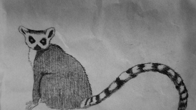 Larry the Lemur Says