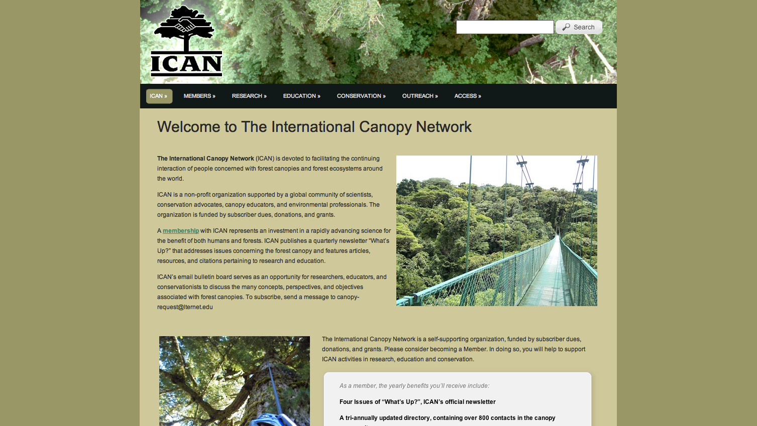 The International Canopy Network Website is currently being developed by Cody Bonney. I offer Web Design Services in Olympia Washington.  sc 1 st  Blogs.evergreen.edu & The International Canopy Network | Just another blogs.evergreen ...