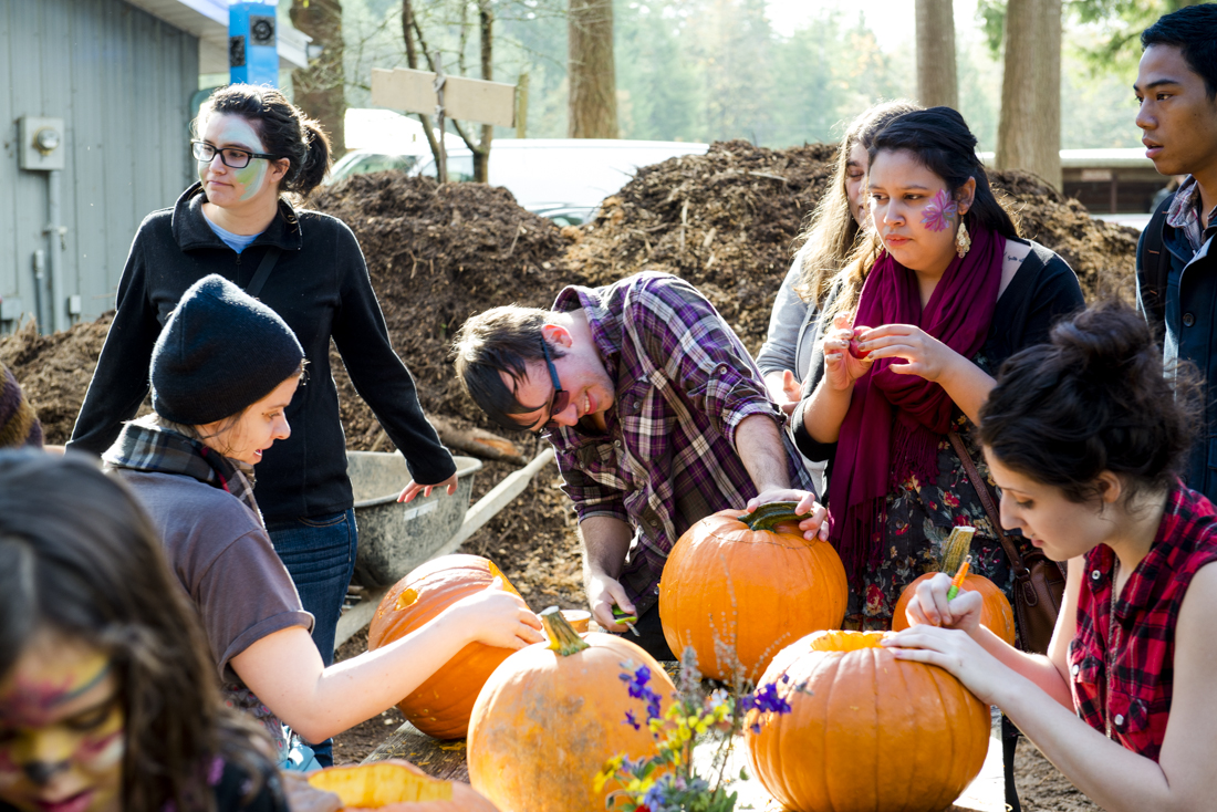 Pumpkin carving fun during the 2013 Harvest Festival at the Organic Farm. Sat., Oct. 12 2013