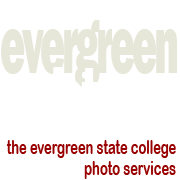 Evergreen Pictures online catalog